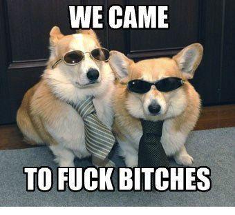 Tony & Manny sont de sortie !
