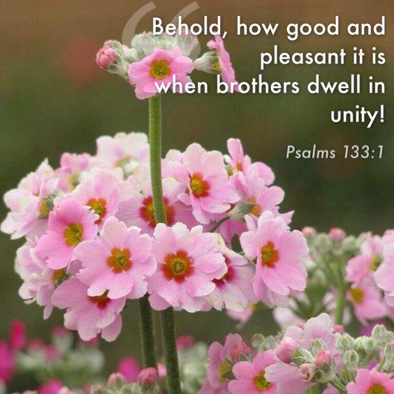 Psalm 133:1: