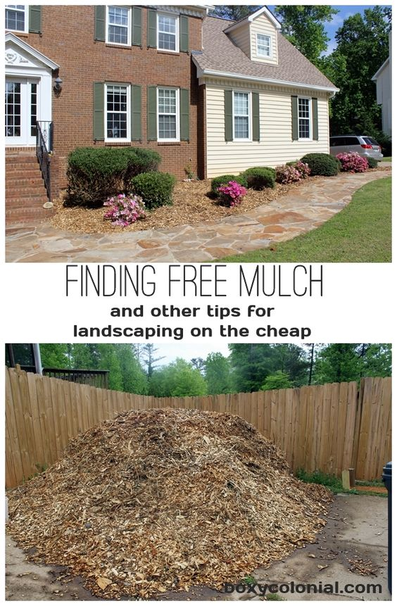 landscaping on the cheap or free backyards the road