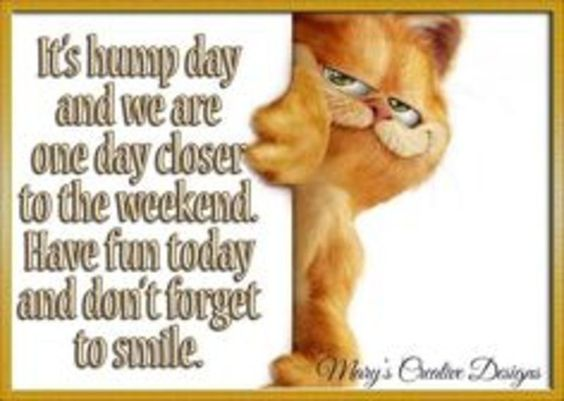 Sayings Quotes Hump Day Wednesday Blessings 33250