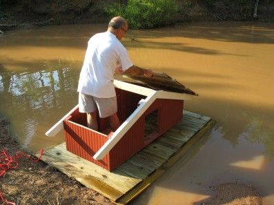 House plans ponds and mallard on pinterest for Duck shelter designs