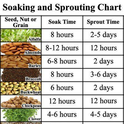 Soaking Grains, Beans, Nuts and Seeds 101 | Yogitrition