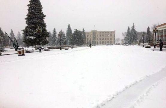 Fins Az Outdoor Snow