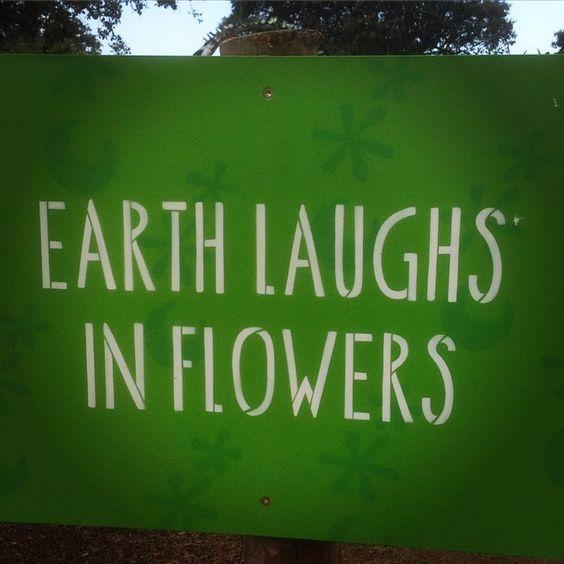 Earth laughs in Flowers @boomfestivalofficial - A Mae Natureza ri nas flores…