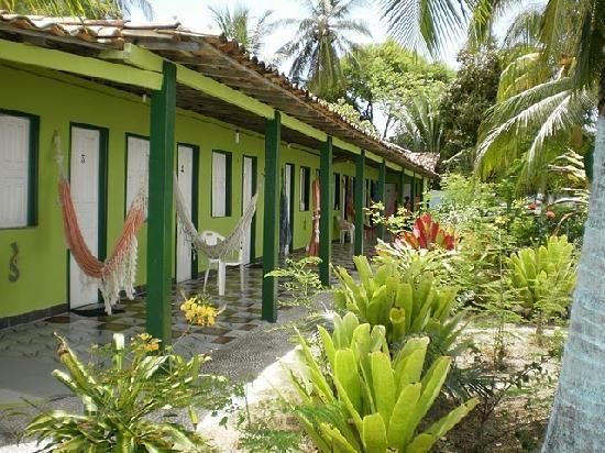 mangue seco   Fotos de Mangue Seco - Imagens selecionadas