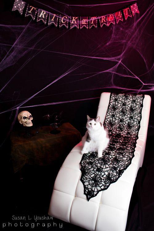 "Mini ""Boo""doir Session - October 5th!"