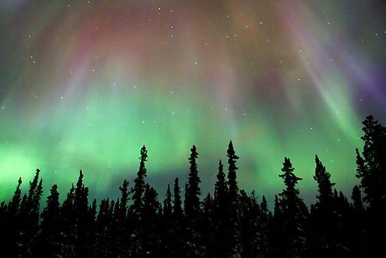 Northern lights in Whitehorse, Yukon.