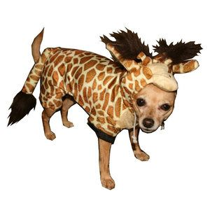 This giraffes suit tickles Emma's fancy.
