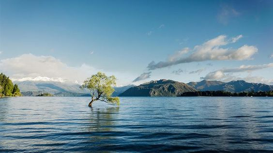 Today's Daily Escape is from Lake Wanaka, New Zealand. http://bit.ly/11vwjw0