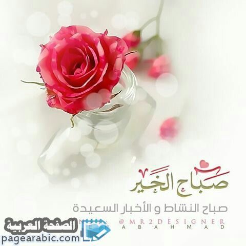 صحافة نت Beautiful Morning Messages Good Morning Arabic Morning Greeting