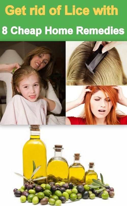 how to get rid of lice fast and cheap