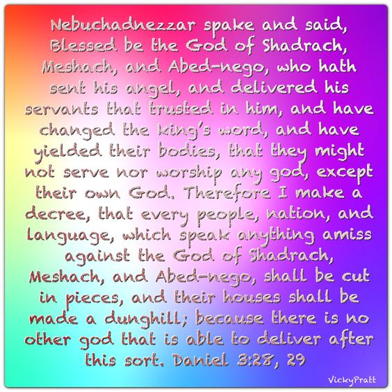 Daniel 3:28,29 No other gods by Kelly Minter Week 8, day 3, 6-2015.