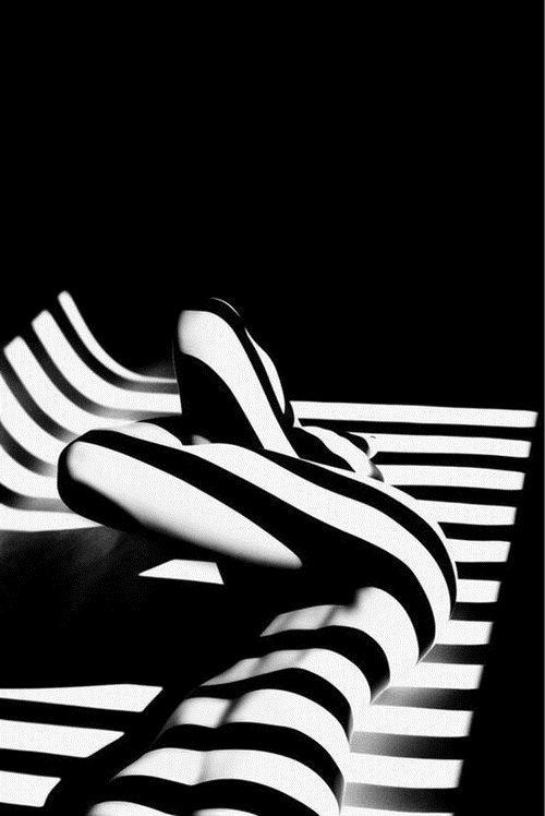 © Francis Giacobetti, 2012, de la serie Zebras: