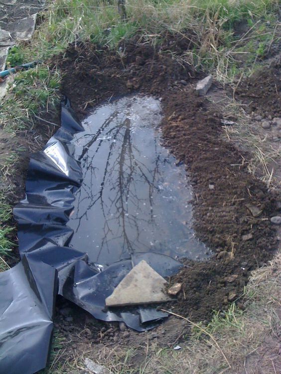 Pond liner left over and ponds on pinterest for Small fish pond liners