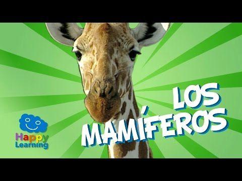 Los Mamiferos   Videos Educativos para Niños - YouTube