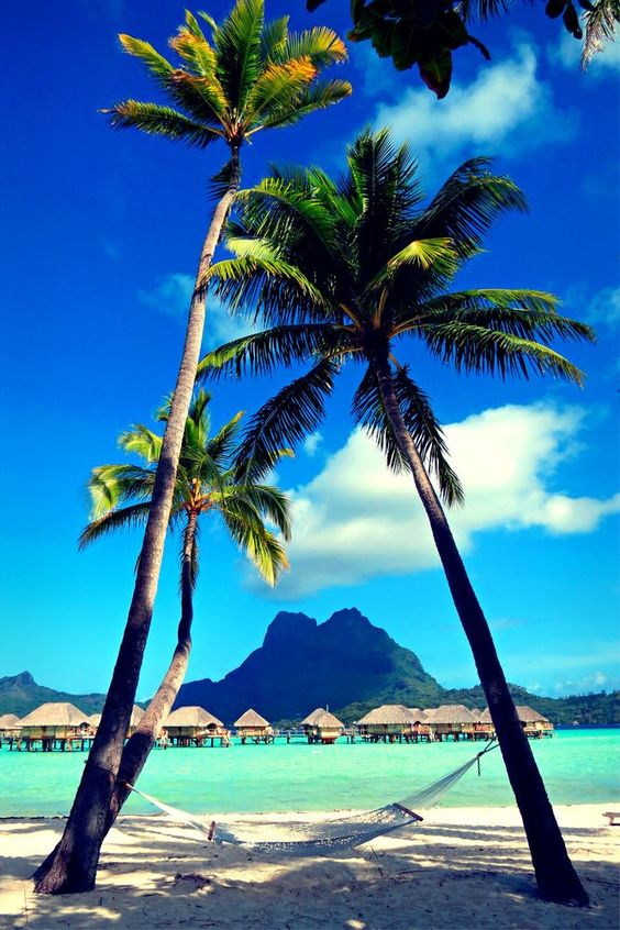 Great picture with view on Mount Otemanu, Bora Bora, Society Islands, French Polynesia.