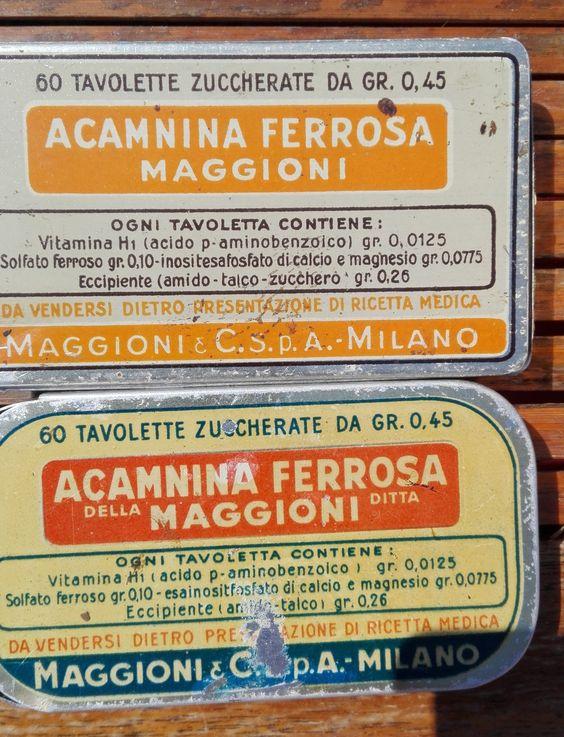 Acamnina Ferrosa Maggioni