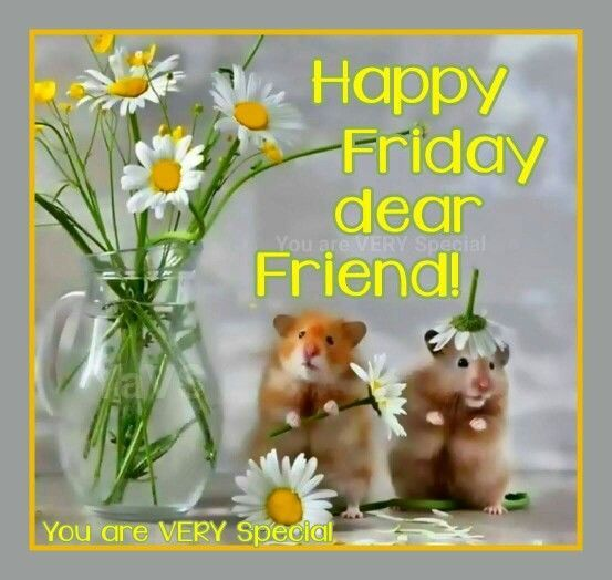 Happy Friday Dear Friend