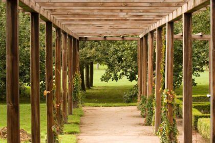 Zelf een houten pergola maken garden pinterest pergolas - Bedek een houten pergola ...