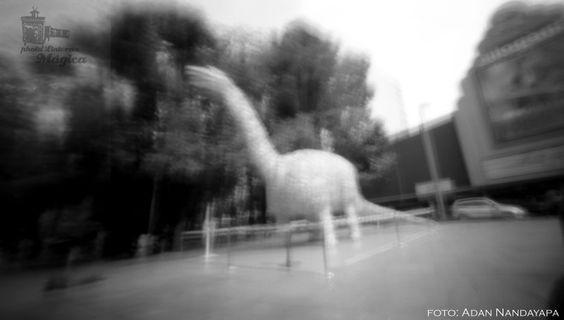 taller_fotografia_estenopeica