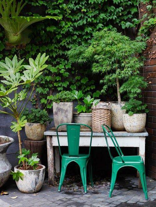 Exterior Tolix Verdes Plantas Jardineria En Macetas Jardines Patio Y Jardin
