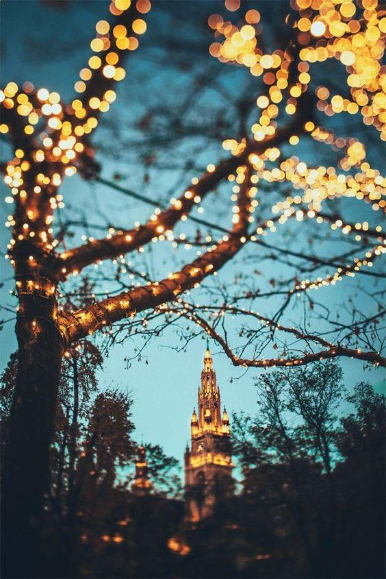 Travel Photography By Julia Davila Lampe Vienna Christmas Christmas Tumblr Vienna