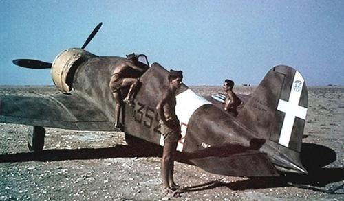 "Fiat G.50bis ""Freccia"" of 352a Squadriglia,Libya 1941"