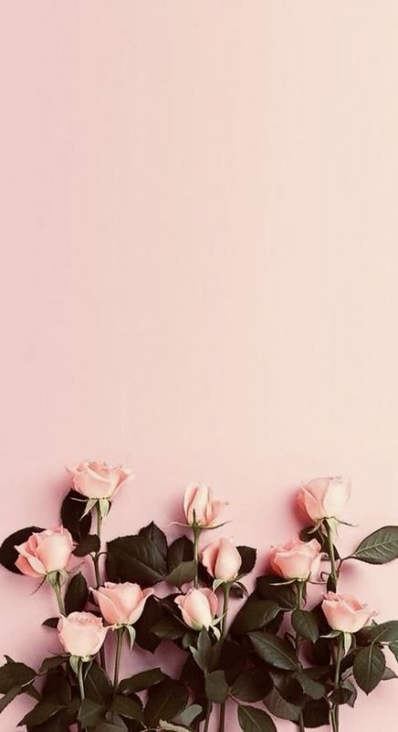 22 Ideas Wall Paper Flowers Tumblr Wallpapers Flowers Wall