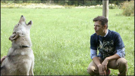 Mathieu part à la rencontre du grand méchant loup pour vérifier si nous avons vraiment raison de le craindre autant. Il tombe sous le charme de Gargamel, un loup gris apprivoisé par sa gardienne Azalée, animalière au Parc Oméga.