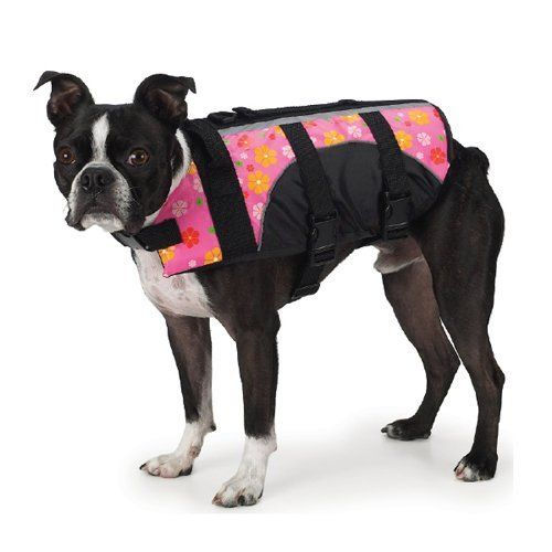 water pets bright colors fit stripes floral the o jays the fun fun pet ...