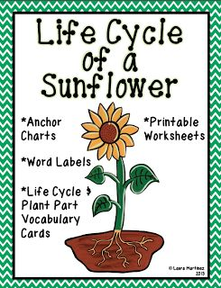 """teacher life cycle Curriculum guide for plant life cycle & soil cd-rom is included in the science kit """" plant life cycle – teacher plant life cycle & soil properties."""