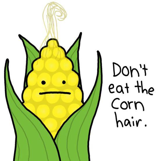 corn hair