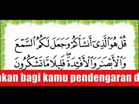 Doa Untuk Hilang Sakit Perut Sakit Kepala Sakit Gigi Sengugut Wmv Youtube Quran Kutipan Pelajaran Hidup Doa