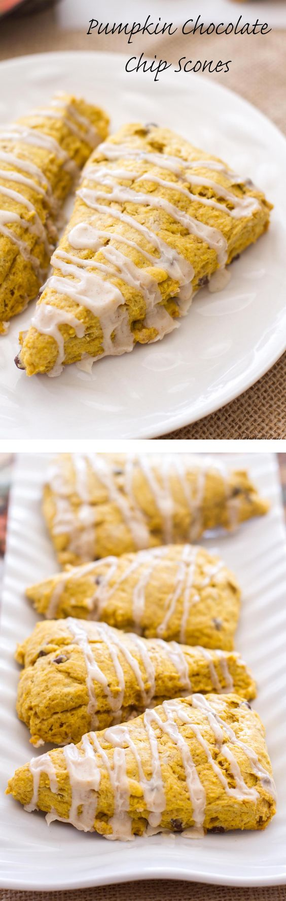 These pumpkin scones are packed with pumpkin flavor, pumpkin spices ...