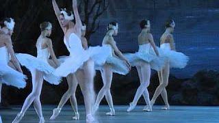 danza clasica lago de los cisnes - YouTube