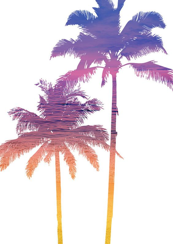 Trees Ombre And Palms On Pinterest