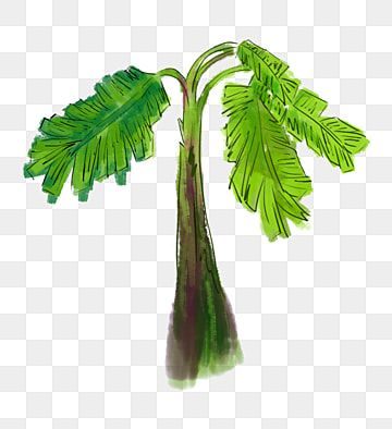 Chinese Wind Ink A Banana Tree Chinese Style Ink Chinese Painting Png Transparent Clipart Image And Psd File For Free Download In 2021 Painting Banana Chinese Painting Banana Tree