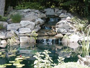 Website diy pond and ponds on pinterest for Build your own waterfall pond