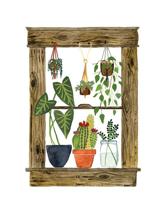 House Plants Art Print, Window Painting, Cactus Wall Art, Succulents, Macrame