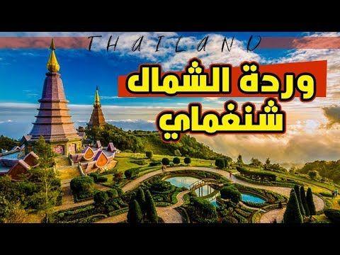 افضل الاماكن السياحية في تايلاند وردة الشمال شنغماي Chiang Mai In Tha Tourism Comic Book Cover Comic Books