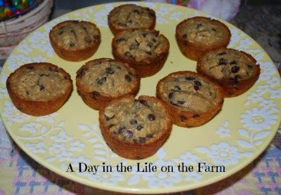 A Day in the Life on the Farm: Nutty and Chocolatey Oatmeal Muffins