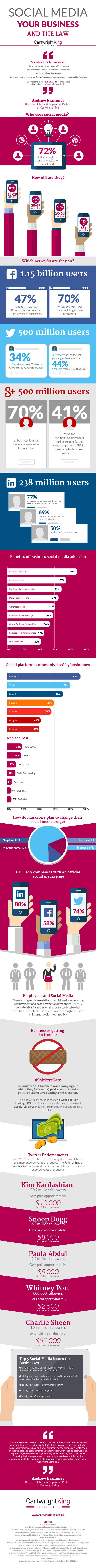 Social Media, Your Business And The Law #Infographic | via #BornToBeSocial