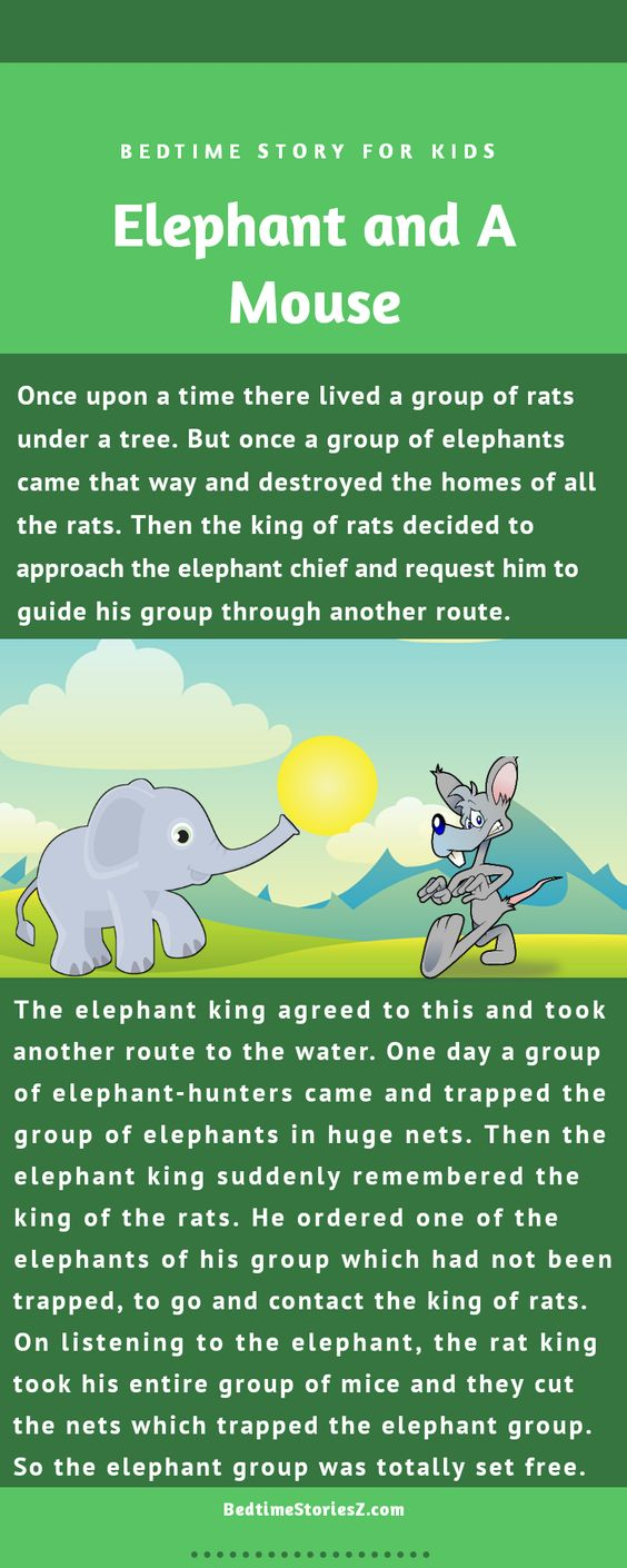 story of elephant and mouse