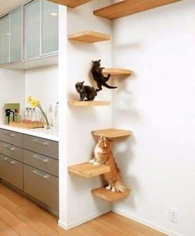 Great Creative Home Decor