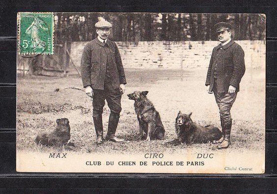 cp2/  club du chien de police de  Paris , max , ciro , duc      dept 75