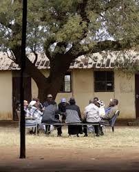 zimbabwe traditional court
