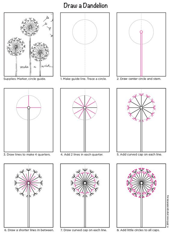 Dandelion Flower Line Drawing : How to draw a dandelion pdf tutorial art projects for