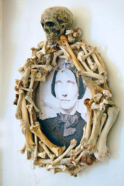 Echte Knochen, lange gesammelt...