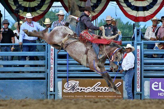 Rodeo-Reno-Bronc-Leigh-3.jpg (1280×853)