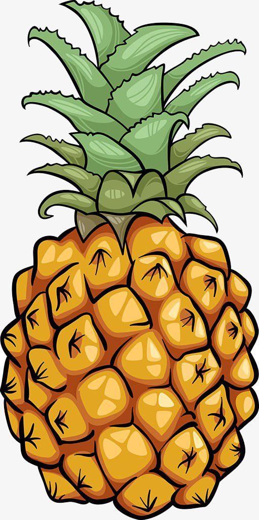 Ilustracao De Abacaxi Abacaxi Ilustracao Frutas Png Imagem